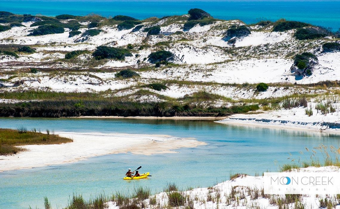Beach Dunes In Florida
